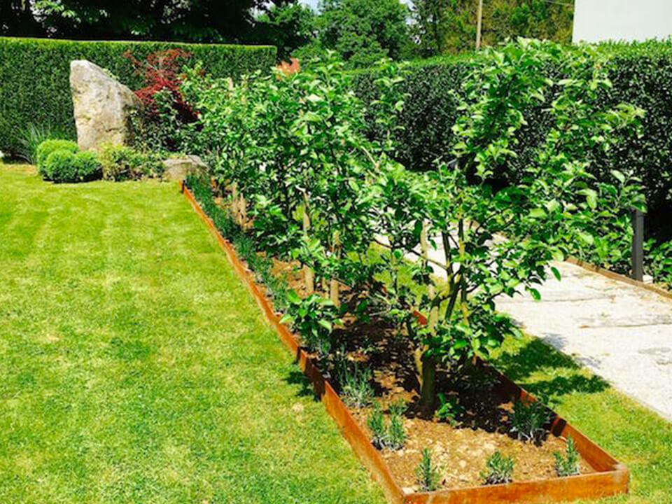 Garden of Eden |Parterres