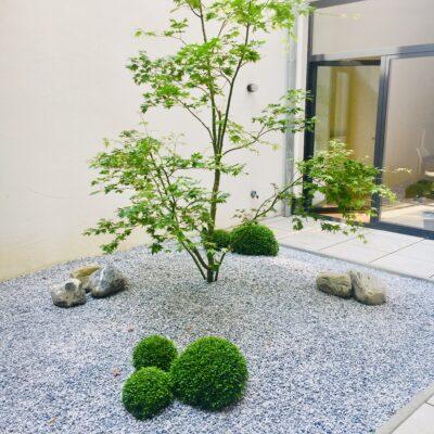 Garden of Eden |Jardin urbain chinois