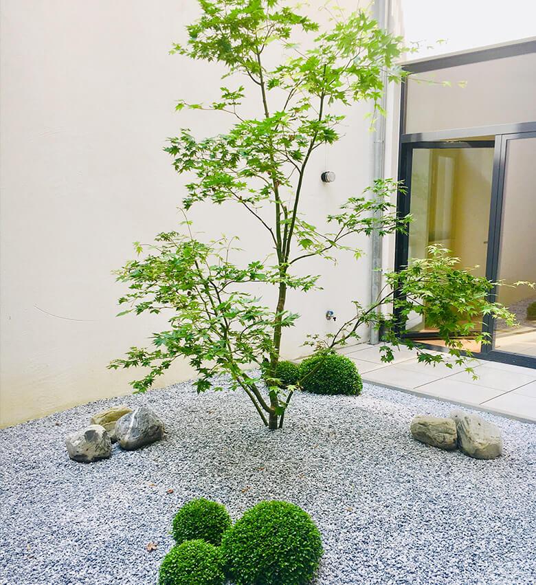 Garden of Eden – Création de jardins urbains